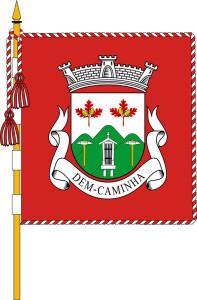 Bandeira de Dem